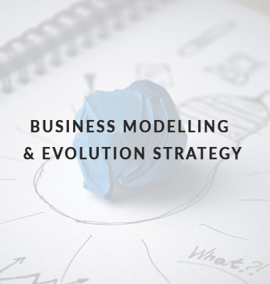 business-modelling-evolution-strategy-icon