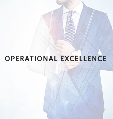operational excellence icon